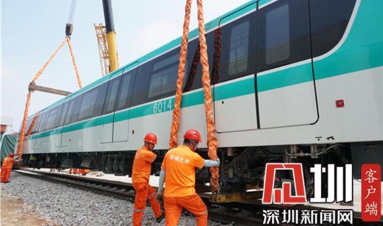 IN视频|深圳地铁6号线首列车抵时候深 一分钟看它长啥样