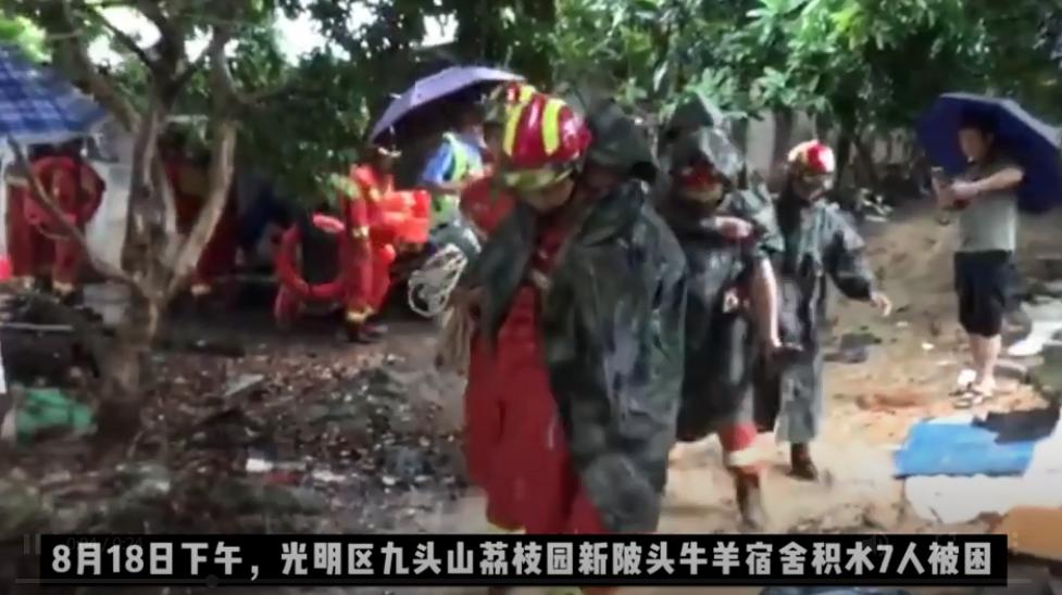 IN视频 | 暴雨来袭光明区一宿舍7人被困 消防及时到场将人救出