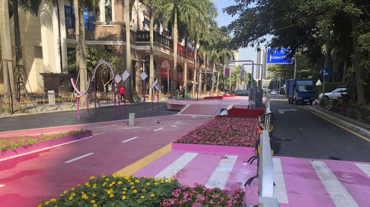 南山路面刷成粉红色 市民吐槽刺眼