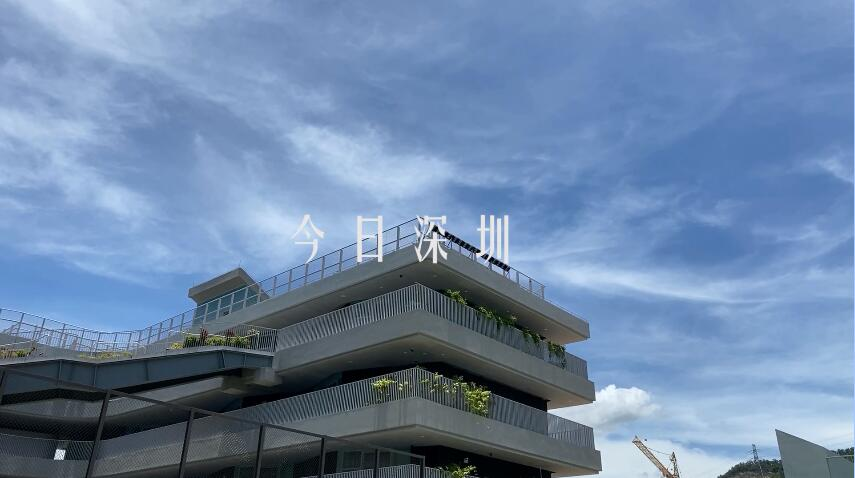 IN视频|今日深圳7月18日:青春里的白昼流星