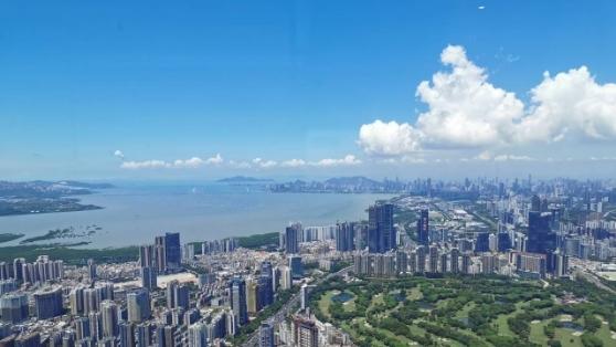 IN视频|今日深圳7月24日:岭南有高楼,上与浮云齐