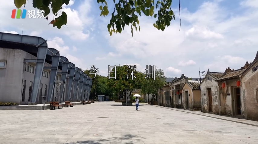 IN视频|今日深圳7月25日:城市里的小小村庄