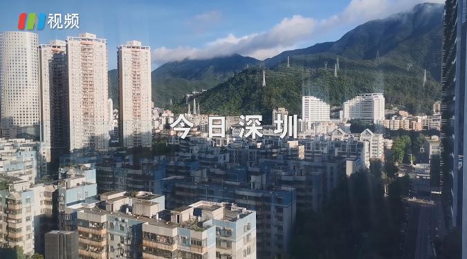 IN视频|今日深圳7月28日:盐田的夏日魔法,绿树映云端