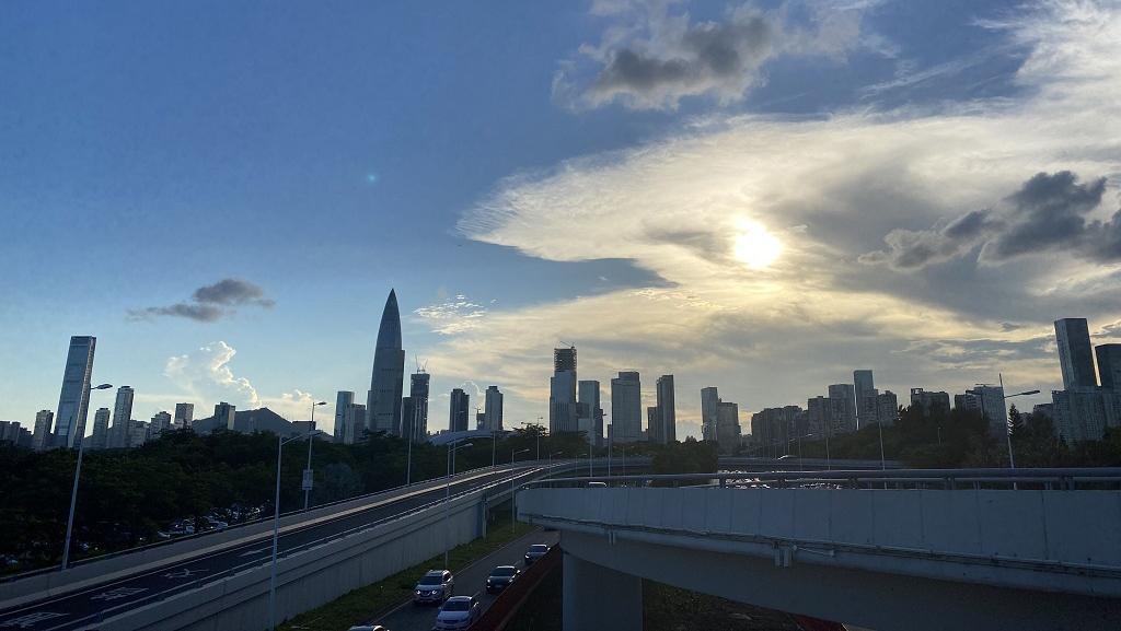 今日深圳8月15日:浓缩的小小宇宙