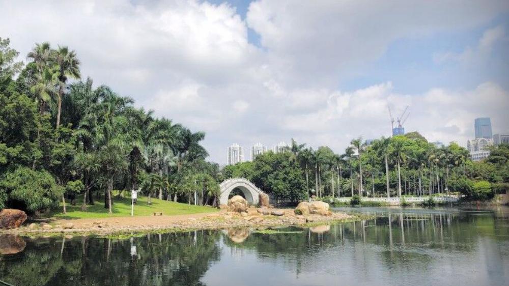 今日深圳9月22日:荔枝公园,大隐隐于市