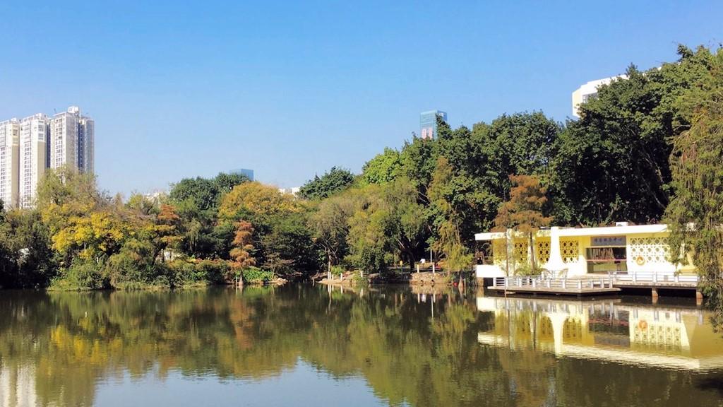 IN视频|今日深圳12月24日:人民公园,暖风熏得游人醉