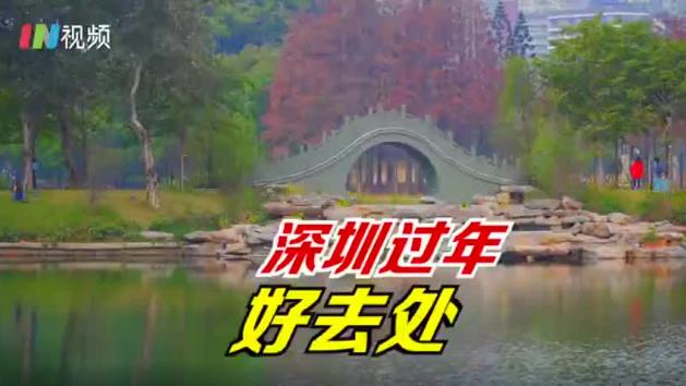 在深圳过年去哪玩 来四海公园欣赏五彩斑斓的冬天