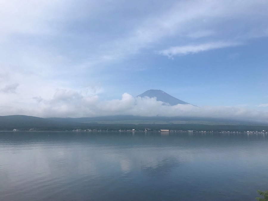 """IN视频