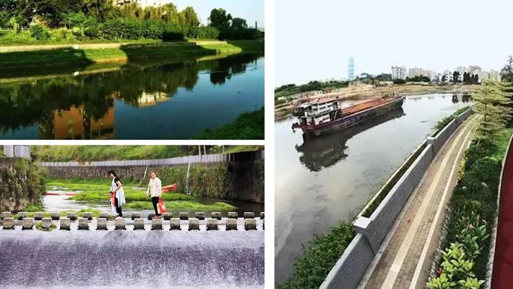 左岸科技 右岸河绿 在这里见证茅洲河之变